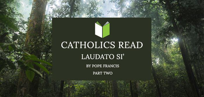 Catholics Read Laudato Si' Part II