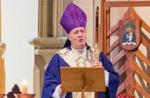 Archbishop Julian Porteous at the Hobart Marriage Mass 2018