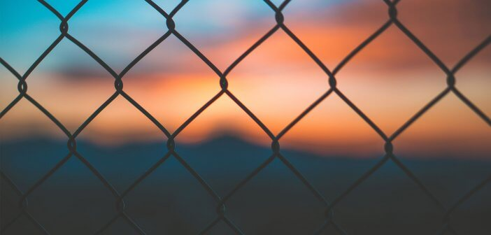 Fence Sunset